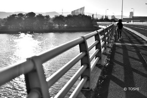 DSC_9134_3745橋.jpg