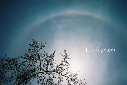 FH000011虹と桜.jpg